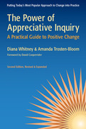 The Power of Appreciative Inquiry